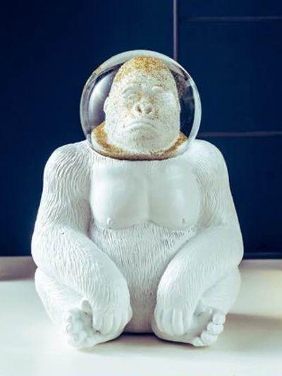 Astronaute singe