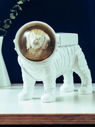Astronaute chien
